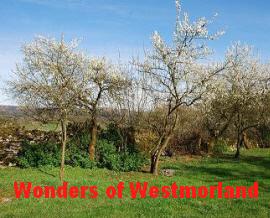 The Wonders of Westmorland